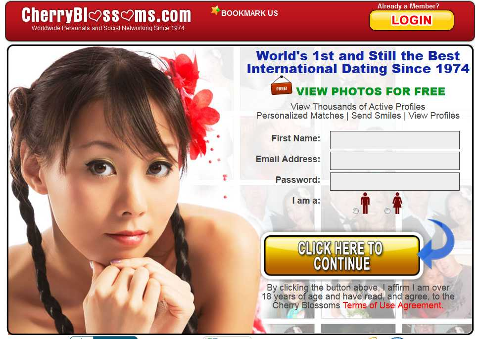 the dating website